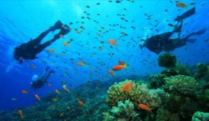 snorkeling marettimo
